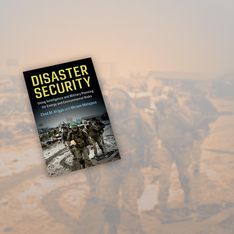 Cover of Disaster Security: Using Intelligence and Military Planning for Energy and Environmental Risks